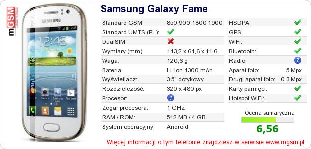Dane telefonu Samsung Galaxy Fame